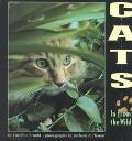 Cats: In from the Wild