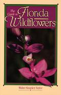 Guide to Florida Wildflowers