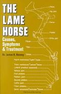 Lame-Horse Causes, Symptoms and Treatments