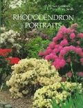 Rhododendron Portraits