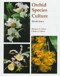 Orchid Species Culture: Dendrobium - Margaret L. Baker - Paperback