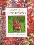 Gardener's Guide to Growing Penstemons