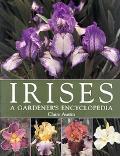Irises A Gardener's Encyclopedia