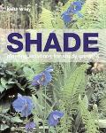Shade Planting Solutions for Shady Gardens