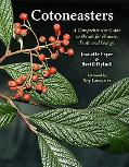Cotoneasters: A Comprehensive Guide to Shrubs for Flowers, Fruit, and Foliage