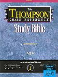 Thompson Chain-Reference Bible New International Version, Burgundy, Bonded Leather