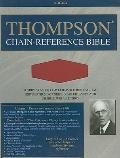 Thompson Chain Reference Bible-NIV-Skateboard