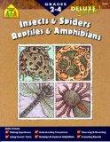 Insects and Spiders/Reptiles and Amphibians