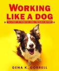 Working Like a Dog The Story of Working Dogs Through History