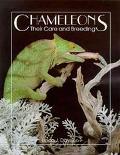 Chameleons Their Care and Breeding