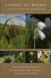 Sedges of Maine: A Field Guide to Cyperaceae