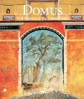 Domus Wall Painting in the Roman House