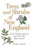 Trees and Shrubs of New England