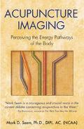Acupuncture Imaging Perceiving the Energy Pathways of the Body