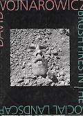 David Wojnarowicz: Brush Fires in the Social Landscape - David Wojnarowicz - Hardcover - 1 ED