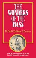 Wonders of the Mass