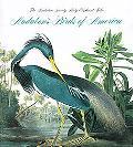Audubon's Birds of America: The Audubon Society Baby Elephant Folio - Roger Tory Peterson - ...