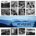 My Wild Life : A Memoir of Adventures Within America's National Parks