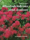 Making Most of Rhododendrons and Azaleas