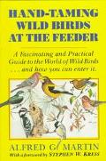 Hand-Taming Wild Birds at the Feeder