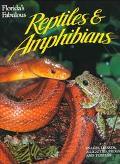 Florida's Fabulous Reptiles and Amphibians
