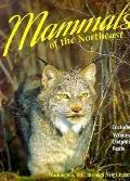 Mammals of the Northeast