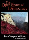Open Space of Democracy