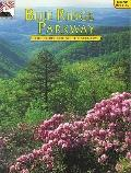 Blue Ridge Parkway: The Story Behind the Scenery - Margaret Rose Rives - Paperback