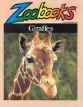Amble Through the Expansive Grasslands of Giraffes