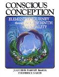 Conscious Conception: Elemental Journey through the Labyrinth of Sexuality