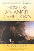 How Like an Angel Came I Down Conversations With Children on the Gospels