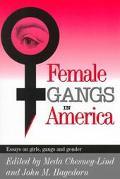 Female Gangs in America Essays on Girls, Gangs, and Gender