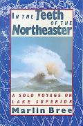 In the Teeth of the Northeaster A Solo Voyage on Lake Superior
