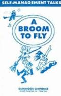 Broom to Fly : New Ways of Solving the Age-Old Problems of Self-Management
