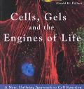 Cells, Gels and the Engines of Life A New, Unifying Approach to Cell Function