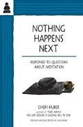 Nothing Happens Next Responses to Questions About Meditation