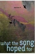 What the Song Hoped For (BV18) : Border Voices 18