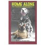 Home Alone: Tools to Help Pets Overcome Separation Anxiety