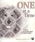 One at a Time A Week in an American Animal Shelter