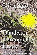 Dandelion through the Crack