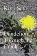 Dandelion Through the Crack : The Sato Family Quest for the American Dream