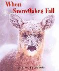 When Snowflakes Fall