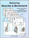 Mastering Muscles and Movement : A Brain-Friendly System for Learning Basic Musculoskeletal ...