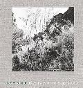 Lee Friedlander: Recent Western Landscape 2008-09