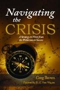 Navigating the Crisis : A Strategy to move from the wilderness to Success