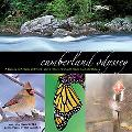 Cumberland Odyssey: A Journey in Pictures and Words Along Tennessee's Cumberland Trail and P...