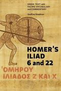 Homer's Iliad 6 and 22: Greek Text with Facing Vocabulary and Commentary