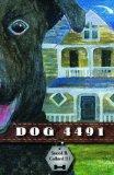 Dog 4491