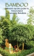 Bamboo : Palmco's Quick Guide to Noninvasive Clumping Bamboo