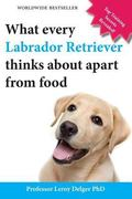 What Every Labrador Retriever Thinks about Apart from Food